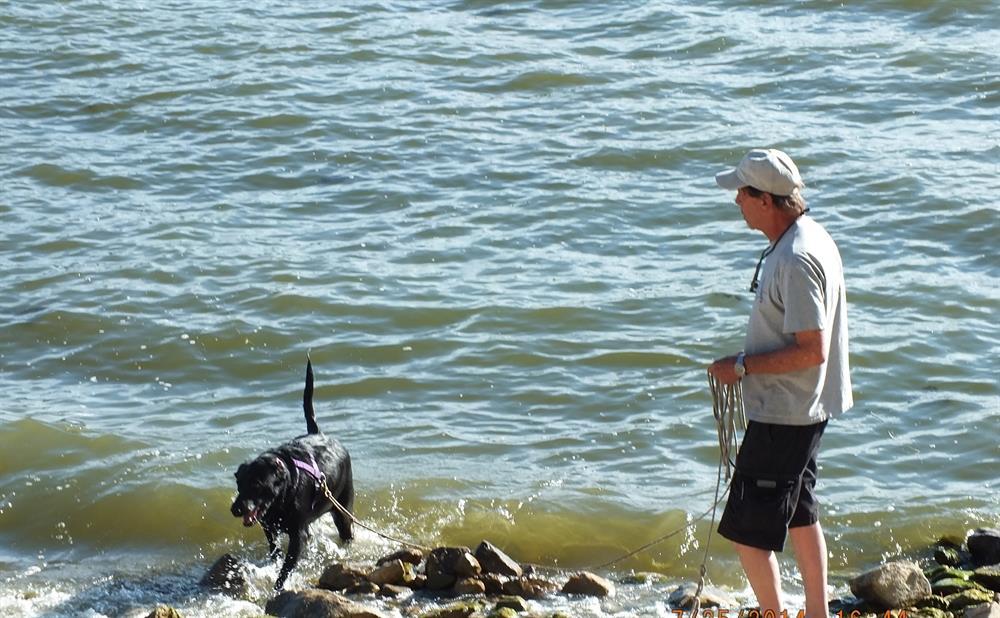 Big bear blog fun on big bear lake for Big bear lake fishing report