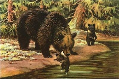 38 Inch Coloured Bear Grass