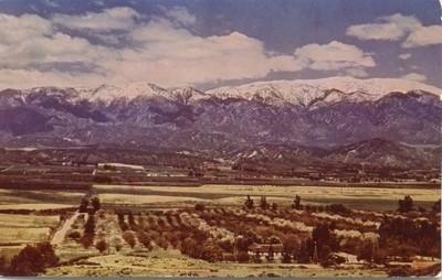 ARROWHEAD ROCK YUCCA San Bernardino Mountains Vintage CALIFORNIA CA Postcard NEW