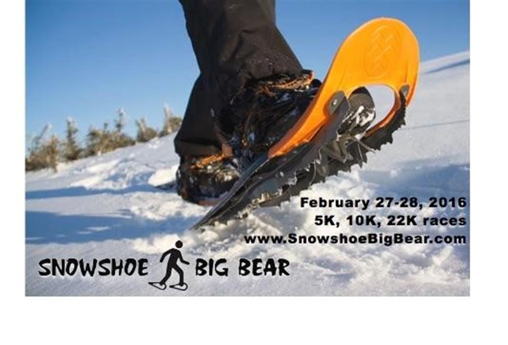 Snowshoe Big Bear